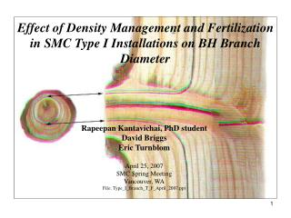 Effect of Density Management and Fertilization in SMC Type I Installations on BH Branch Diameter