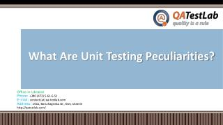 What Are Unit Testing Peculiarities?