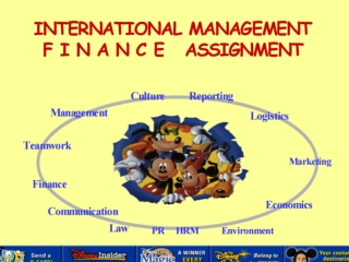The Finance Assignment