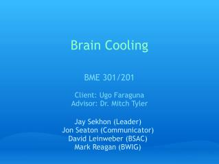 Brain Cooling