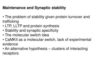 Maintenance and Synaptic stability