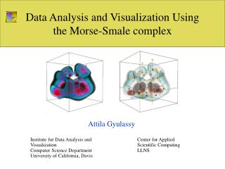 Data Analysis and Visualization Using the Morse-Smale complex