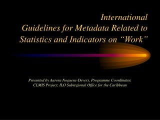 "International  Guidelines for Metadata Related to Statistics and Indicators on ""Work"""
