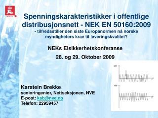NEKs Elsikkerhetskonferanse  28. og 29. Oktober 2009