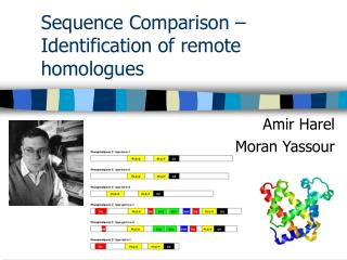 Sequence Comparison – Identification of remote homologues