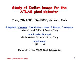 Study of Indium bumps for the ATLAS pixel detector