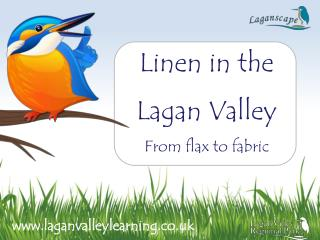 Linen in the Lagan Valley From flax to fabric