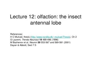 Lecture 12: olfaction: the insect antennal lobe
