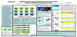 AURA OMI Ozone Profiles for Large-scale CMAQ Boundary Conditions with Lightning Effects
