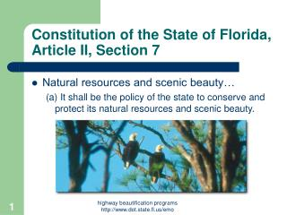 Constitution of the State of Florida, Article II, Section 7