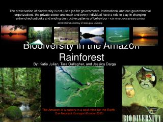 Biodiversity in the Amazon Rainforest