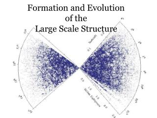 Formation and Evolution of the Large Scale Structure