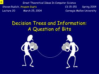 Decision Trees and Information: A Question of Bits