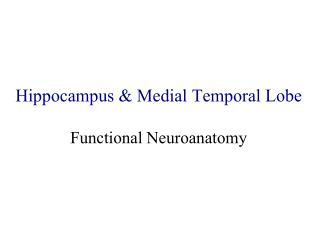 Hippocampus & Medial Temporal Lobe Functional Neuroanatomy