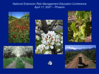 National Extension Risk Management Education Conference April 17, 2007 -- Phoenix