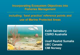Incorporating Ecosystem Objectives into Fisheries Management