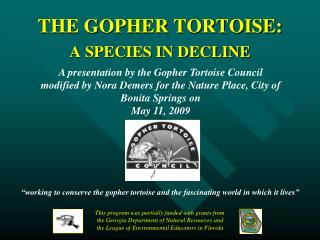THE GOPHER TORTOISE: