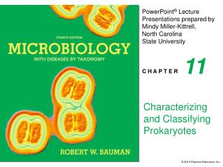 Characterizing and Classifying Prokaryotes