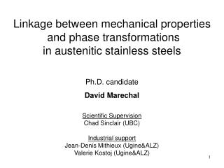 Linkage between mechanical properties  and phase transformations  in austenitic stainless steels