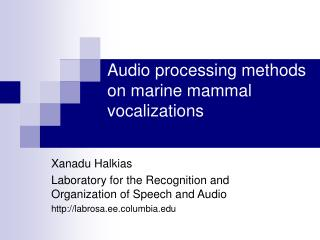 Audio processing methods on marine mammal vocalizations