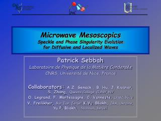 Microwave Mesoscopics Speckle and Phase Singularity Evolution  for Diffusive and Localized Waves