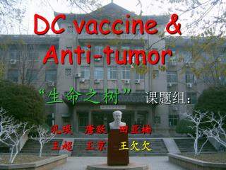 DC vaccine & Anti-tumor