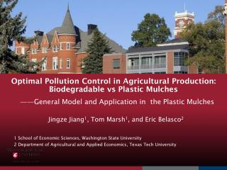 Optimal Pollution Control in Agricultural Production: Biodegradable vs Plastic Mulches