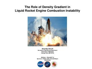 The Role of Density Gradient in  Liquid Rocket Engine Combustion Instability Amardip Ghosh