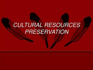 CULTURAL RESOURCES PRESERVATION