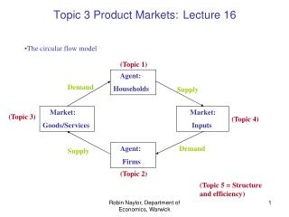 Topic 3 Product Markets: Lecture 16