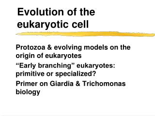 Evolution of the eukaryotic cell