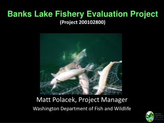 Banks Lake Fishery Evaluation Project (Project 200102800)