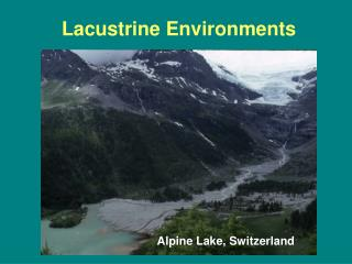 Lacustrine Environments
