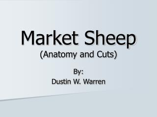 Market Sheep (Anatomy and Cuts)