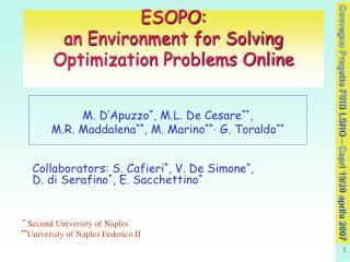 ESOPO:  an Environment for Solving Optimization Problems Online