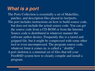 What is a port