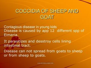 COCCIDIA OF SHEEP AND GOAT