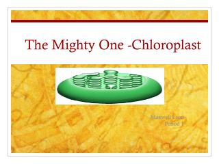 The Mighty One -Chloroplast