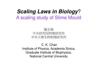 Scaling Laws in Biology ? A scaling study of Slime Mould