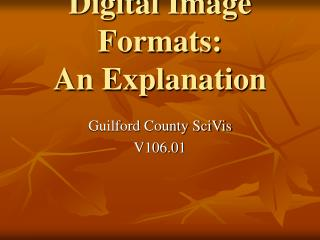 Digital Image Formats: An Explanation