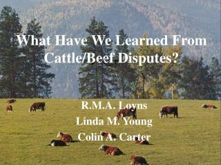 What Have We Learned From Cattle/Beef Disputes?
