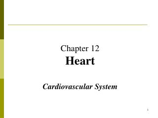 Chapter 12 Heart Cardiovascular System