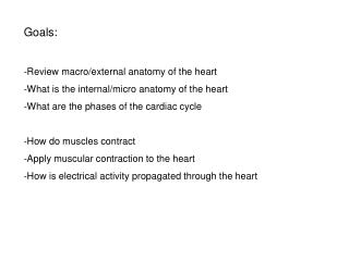 Goals: Review macro/external anatomy of the heart What is the internal/micro anatomy of the heart