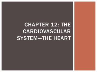 Chapter 12: The Cardiovascular System—The Heart