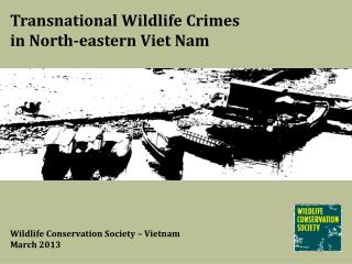 Transnational Wildlife Crimes  in North-eastern Viet Nam