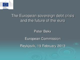 The European sovereign debt crisis and the future of the euro