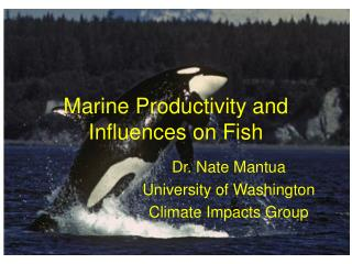 Marine Productivity and Influences on Fish
