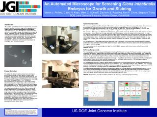 An Automated Microscope for Screening  Ciona intestinalis  Embryos for Growth and Staining