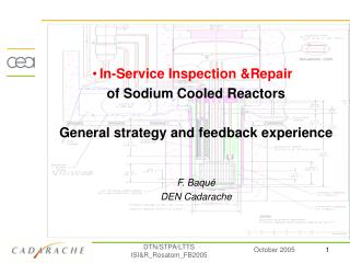 In-Service Inspection &Repair of Sodium Cooled Reactors General strategy and feedback experience