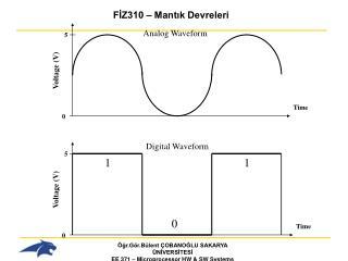 Analog Waveform
